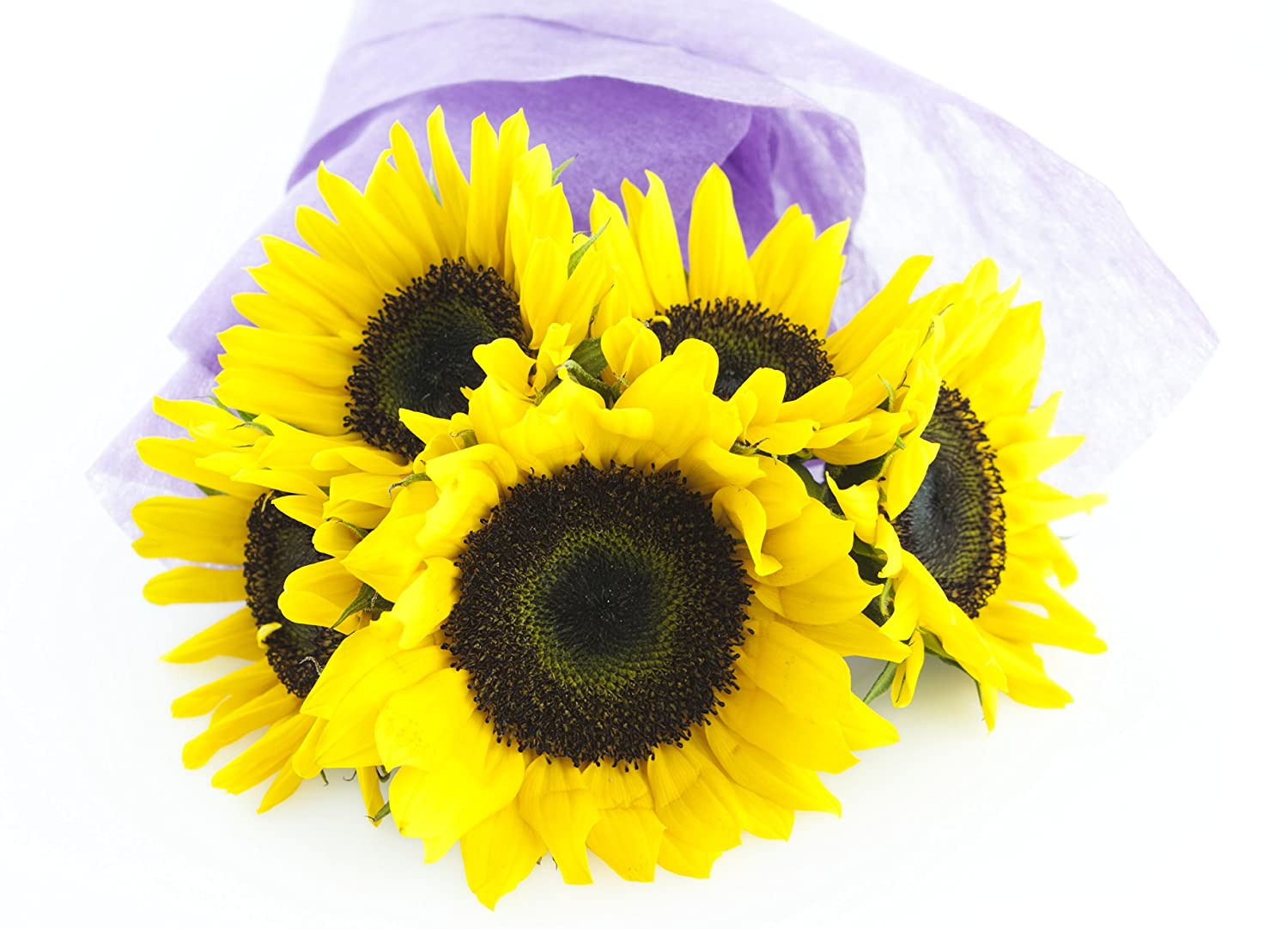 Amazon sunflower bouquet 5 stems without vase grocery amazon sunflower bouquet 5 stems without vase grocery gourmet food reviewsmspy