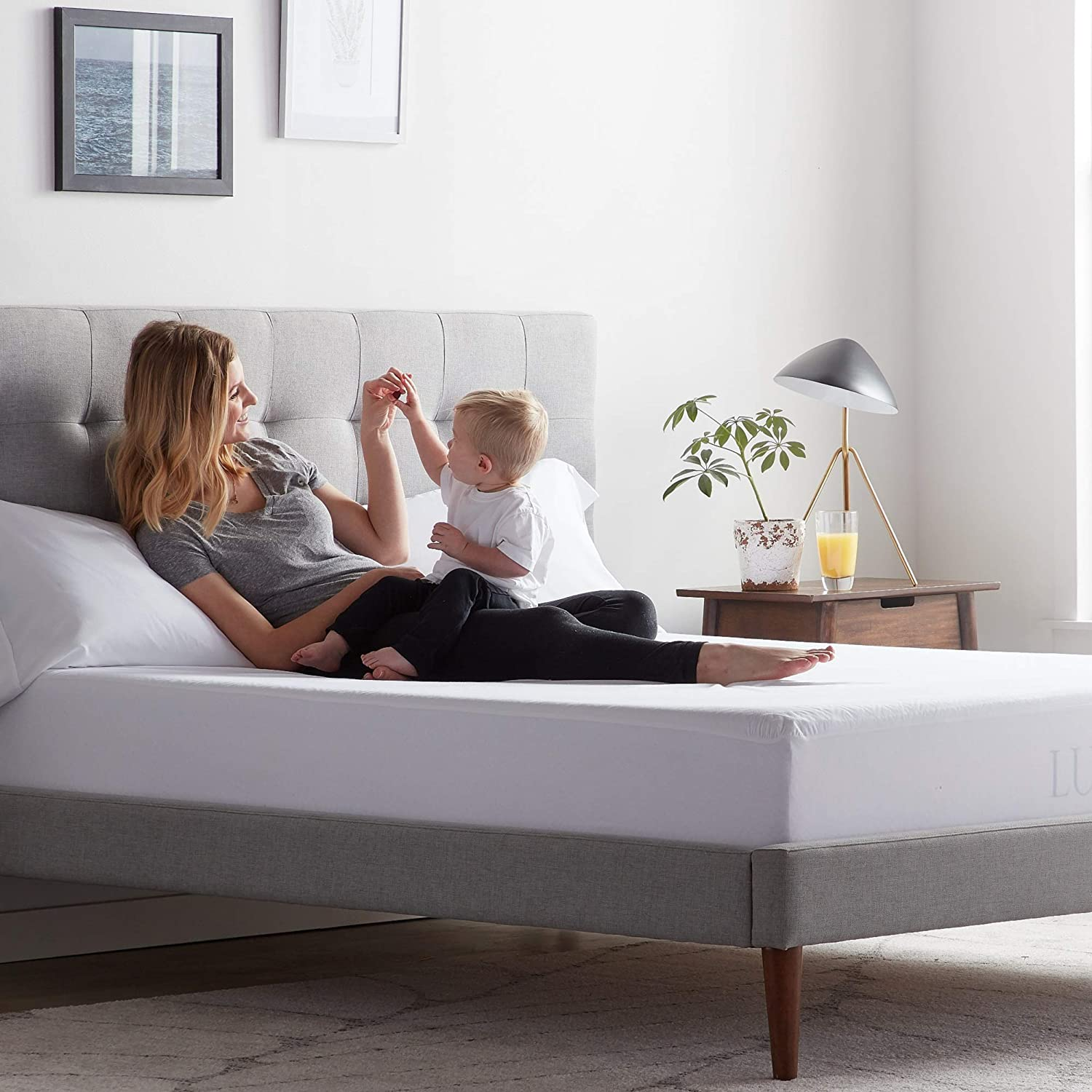 LUCID Premium Rayon from Bamboo Jersey Mattress Protector Waterproof Dust Mite Proof Hypoallergenic Queen Ultra Soft
