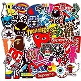100-Pcs Street Fashion Sticker Pack Waterproof Cute Aesthetic Trendy Vinyl Stickers for Teens Kids Girls and Boys…