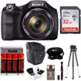 Sony Digital Camera Bundle Featuring DSCH300B, DSLR Holster Bag and 32 GB Card, Black