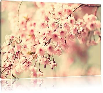 Kirschblüten aus dem Internet