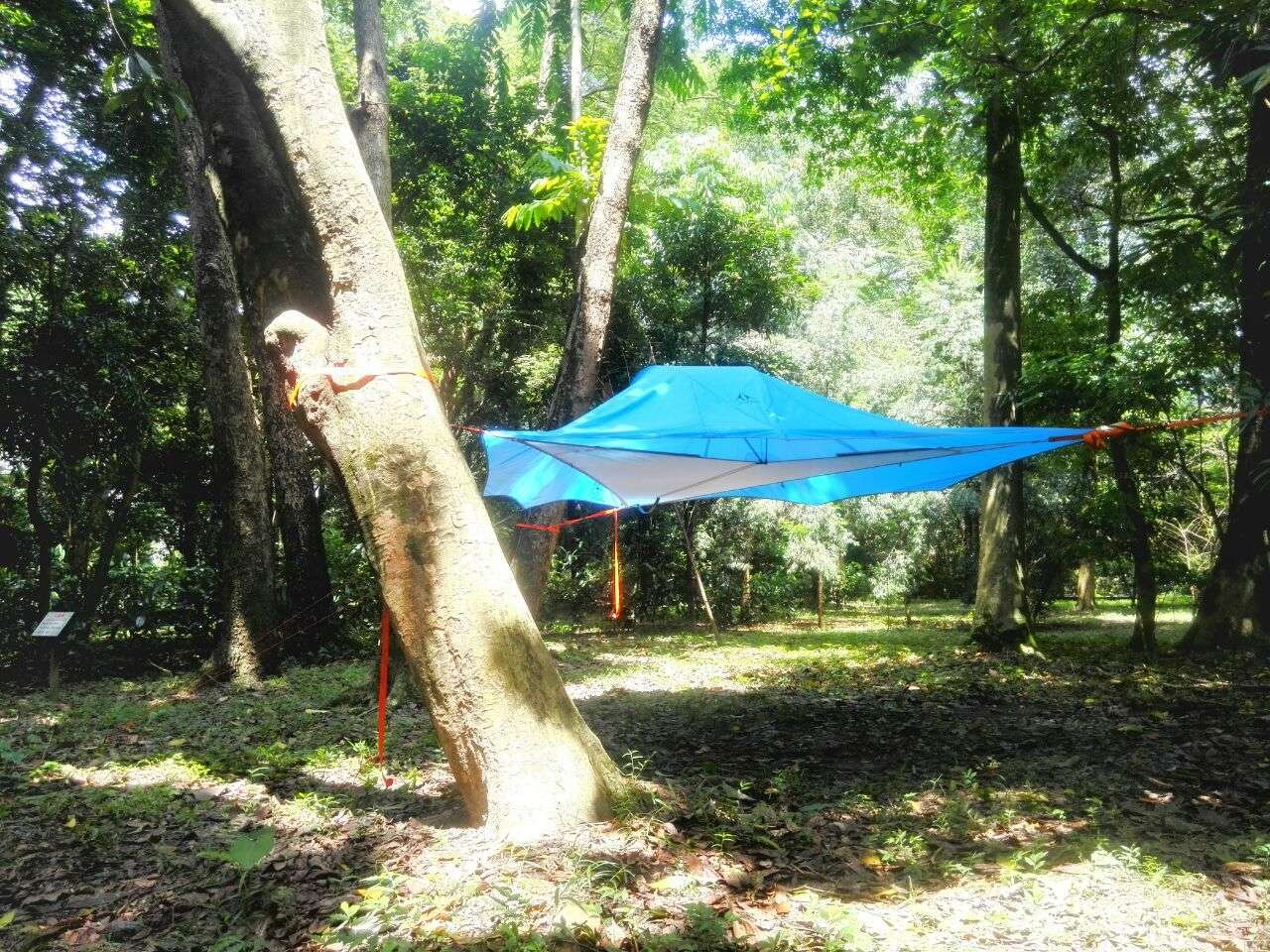 Amazon.com : New Outdoor Leisure Two People Hammock Air Tree Tent (blue) :  Sports U0026 Outdoors
