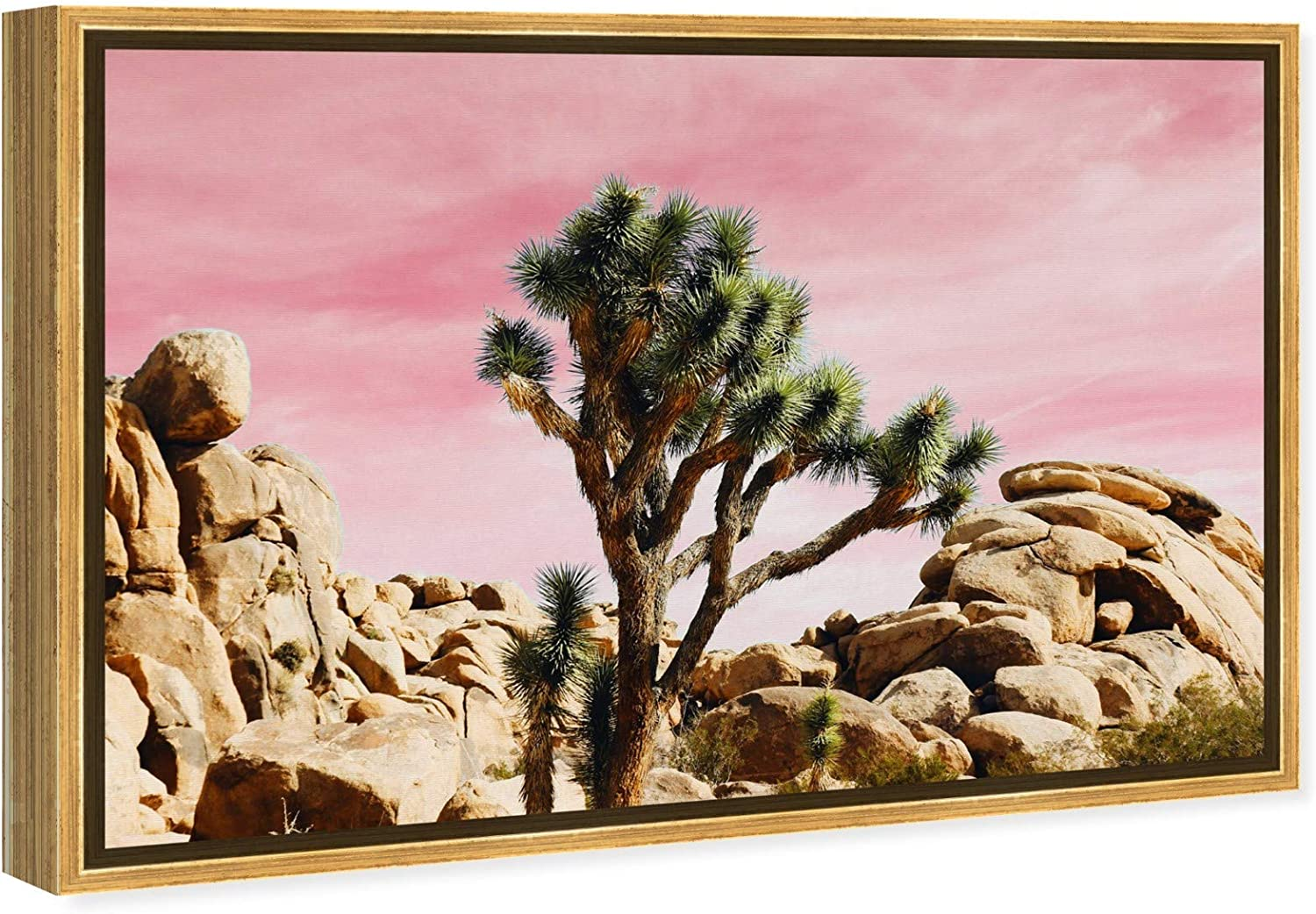 Amazon Com The Oliver Gal Artist Co Nature Framed Wall Art Canvas Prints Joshua Tree Desert Landscapes Home Décor 24 X 16 Pink Green Posters Prints