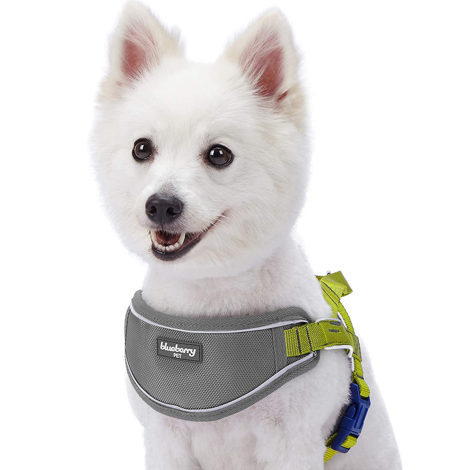 Citrus Lime (20.5\ Citrus Lime (20.5\ blueeberry Pet New 5 colors Soft & Comfy 3M Reflective Strips Padded Dog Harness Vest, Chest Girth 20.5  26 , Citrus Lime, Medium, Nylon Adjustable Training Harnesses for Dogs