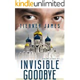 Invisible Goodbye (Enigma Series Book 7)