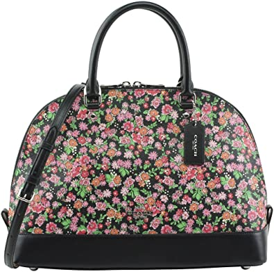Amazon coach womens sierra satchel in posey cluster floral coach womens sierra satchel in posey cluster floral print coated canvas style f57622 silver mightylinksfo