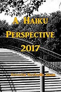 A Haiku Perspective 2017