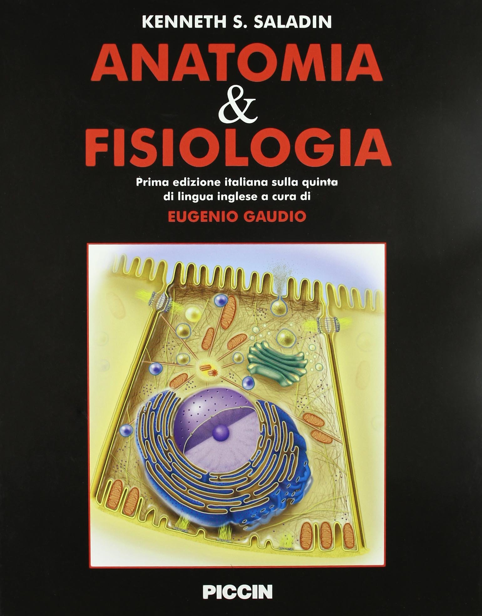 Anatomia & fisiologia: Amazon.es: Kenneth S. Saladin, E. Gaudio ...
