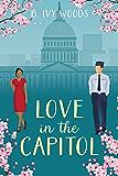 Love In The Capitol: A Contemporary Romantic Suspense Novella (In The Capitol Series Book 0)