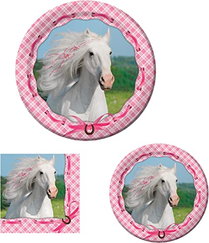 Dessert Plates and Napkins Creative Converting SG/_B01EK28MCG/_US Heart My Horse Birthday Party Supplies Set for 16 Dinner Plates