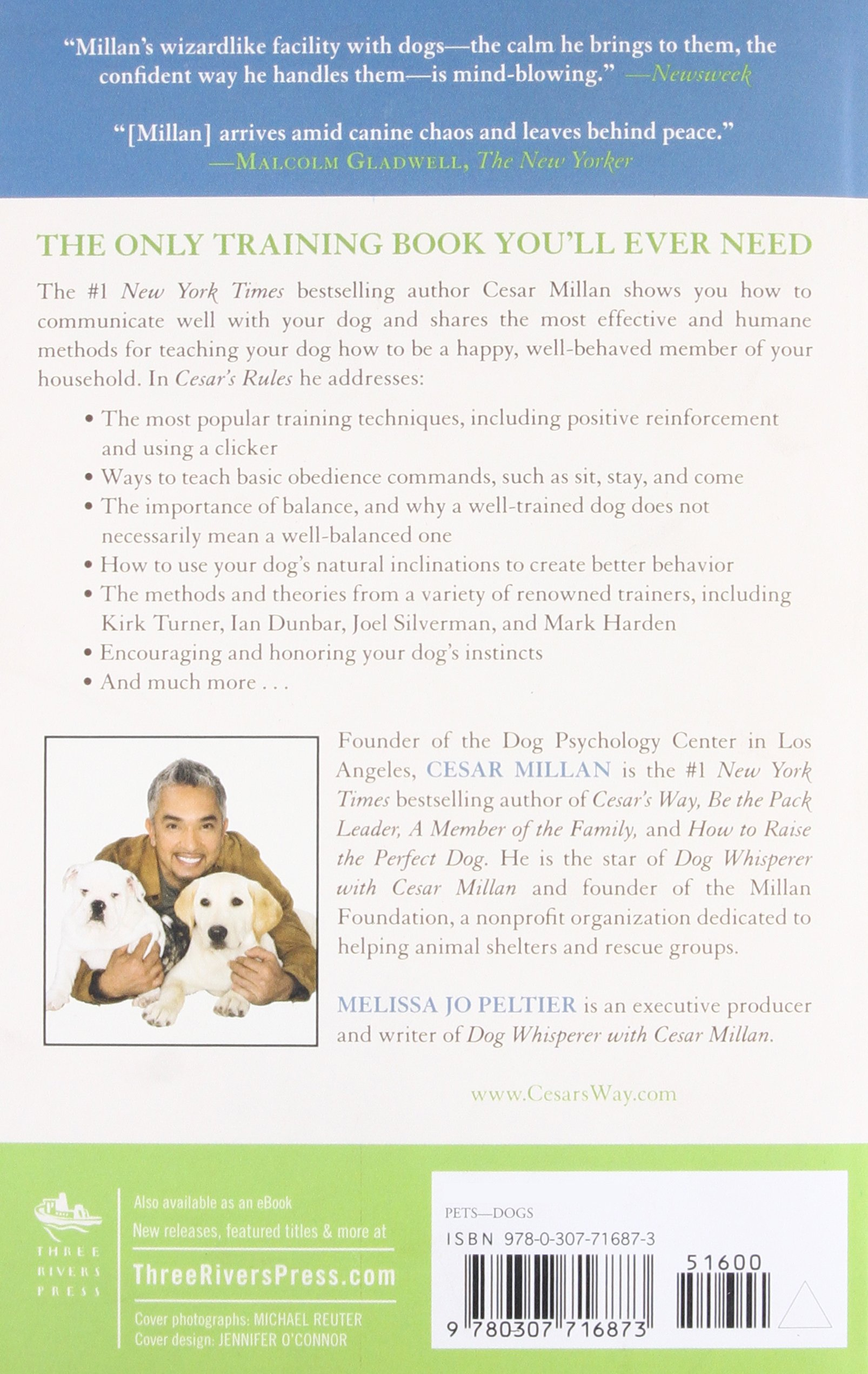 Cesar's Rules: Your Way to Train a Well-Behaved Dog by Three Rivers Press (Image #2)