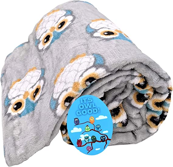 Owl Blanket and Magnet