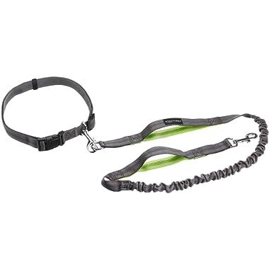 AmazonBasics Dog Leashes (Single, Double, and Bungee Handled)