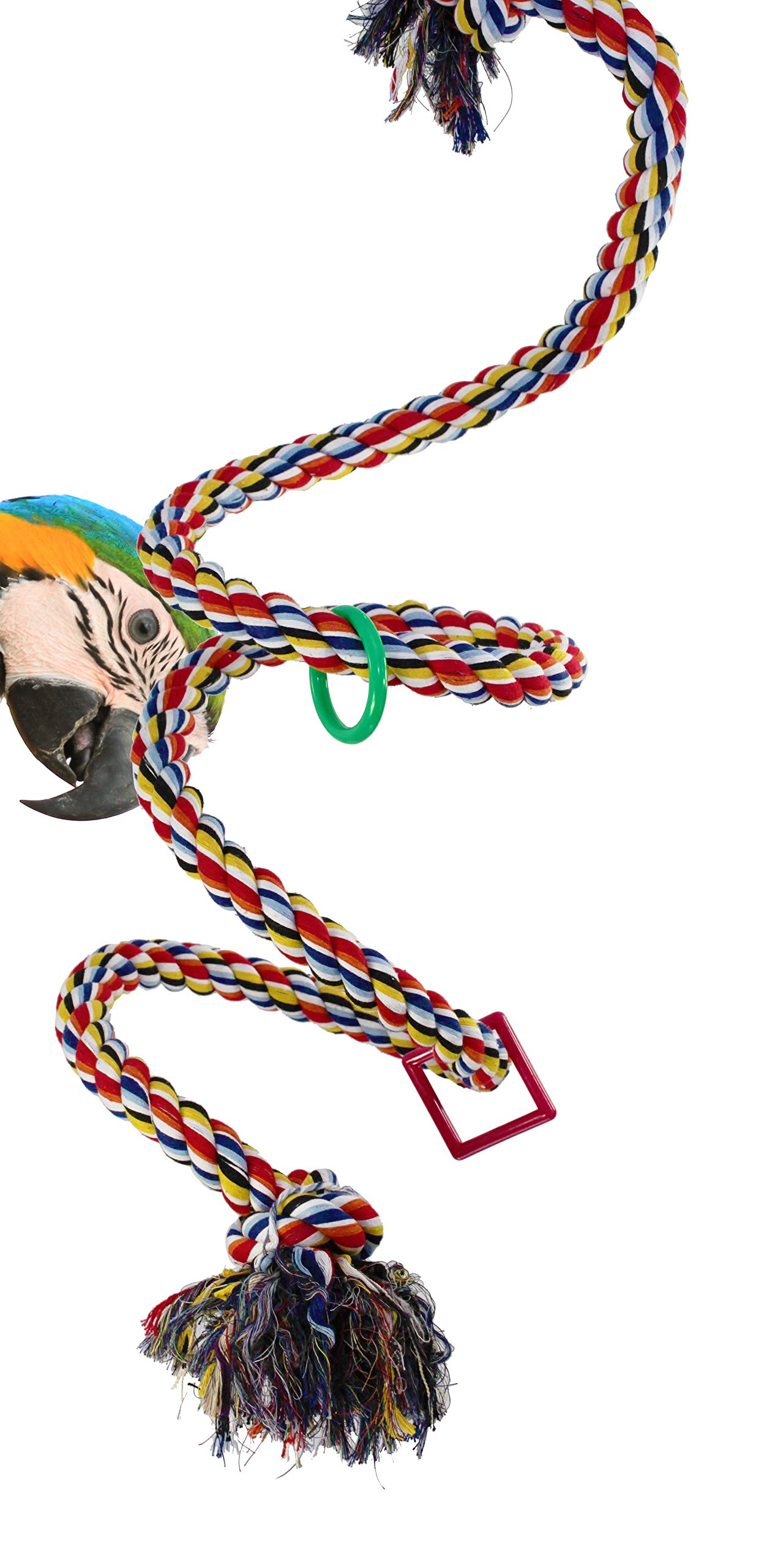Bonka Bird Toys 1962 Huge Charm Rope Boing Coil Swing Bird Toy Parrot cage pet Stand Perch Macaw Cockatoo Amazon African Grey Play chew Aviary Bungee Accessories Colored Playground by Bonka Bird Toys