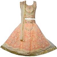 Sky Heights Girls' Peach Net Lehenga Choli/Ghagra (Ethnic Wear Dress for Kids)