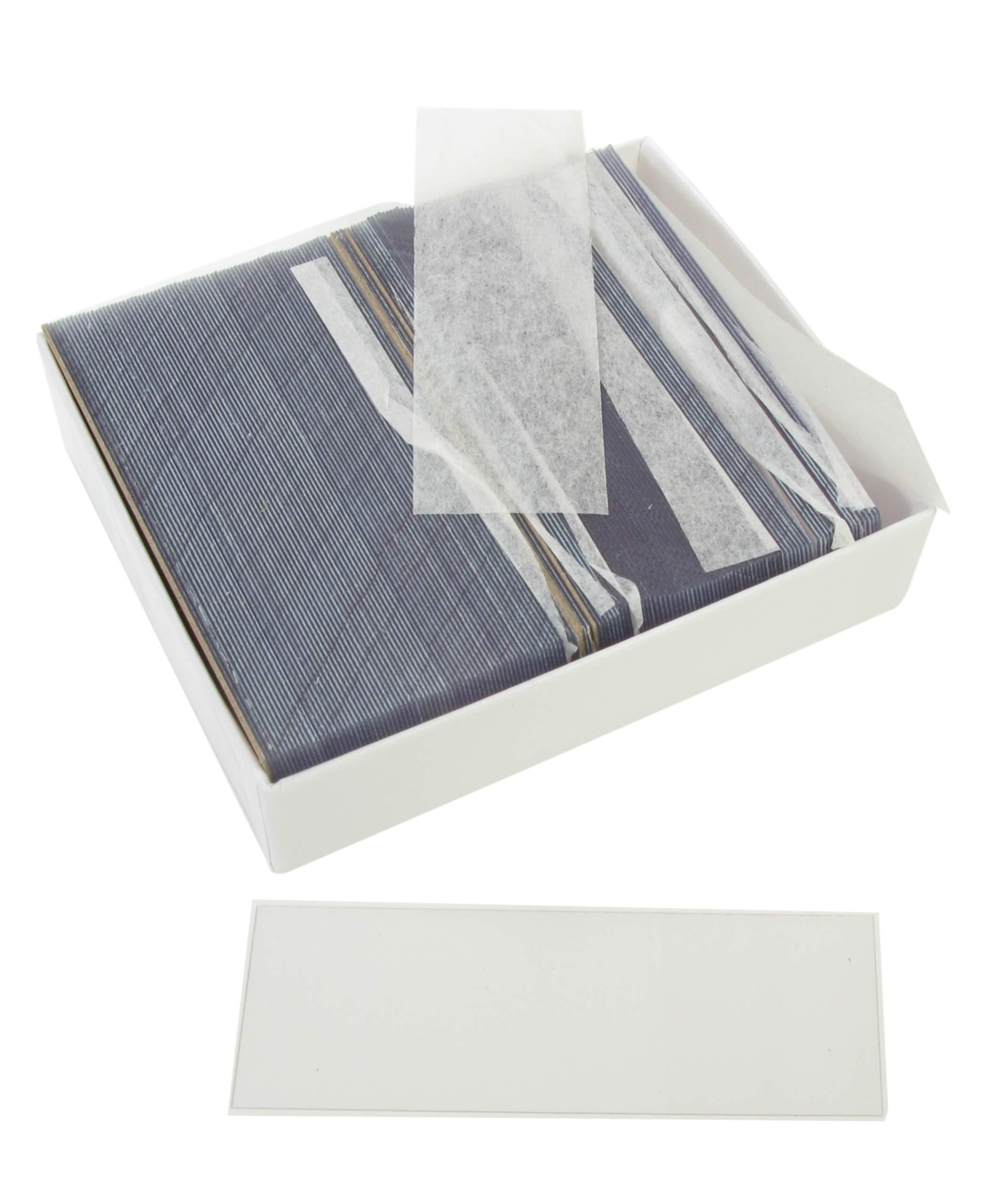 American Educational 7-1305-15 Plastic Microscope Slides, 1 x 3'' Size (144 slides) by American Educational Products