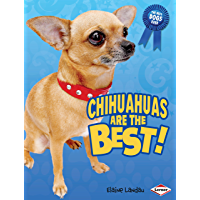 Chihuahuas Are the Best! (The Best Dogs Ever)