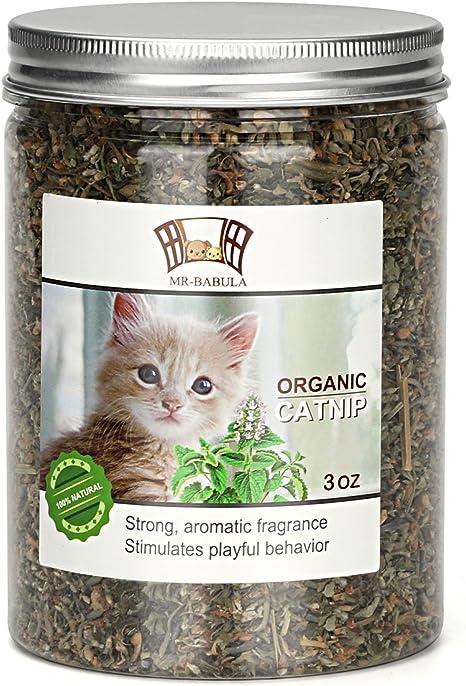 Amazon Com Mr Babula Organic Catnip Natural North American