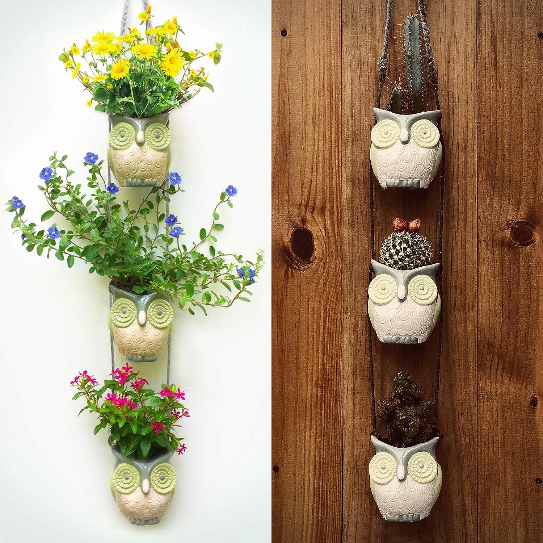 Amazon.com: Hanging Owl Pots. Simple Wall Planter Decor for ...