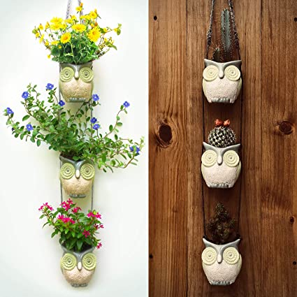 Amazon.com: Hanging Owl Pots. Simple Wall Planter Decor for ... on hibiscus house plants, different types cactus plants, pruning cactus house plants, sunflower house plants, blooming cactus plants, tall house plants, flowering succulent plant identification, indoor plants, types of succulent plants, flower house plants, agave house plants, household cactus plants, angel house plants, watering cactus house plants, edible cactus house plants, common house plants, peach tree house plants, lilies house plants, yucca house plants, begonias house plants,