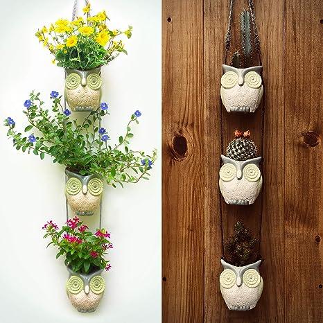 Amazon Woodland Jungle OwlsCool Hanging Succulent Planters For Plants Flowers Cactus Vintage Owl Decor Pots Garden Outdoor