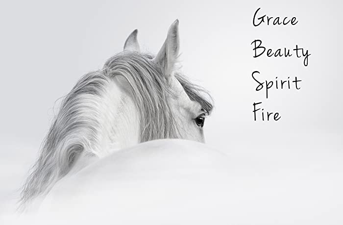 Andalusian Stallion Quote Art Print Wild Horse Wall Decor Girls Room