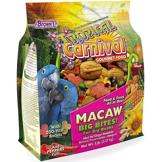 F.M. Browns F.M. marrón Tropical de Carnaval Guacamayo Alimentos, 5-Pound: Amazon.es: Productos para mascotas