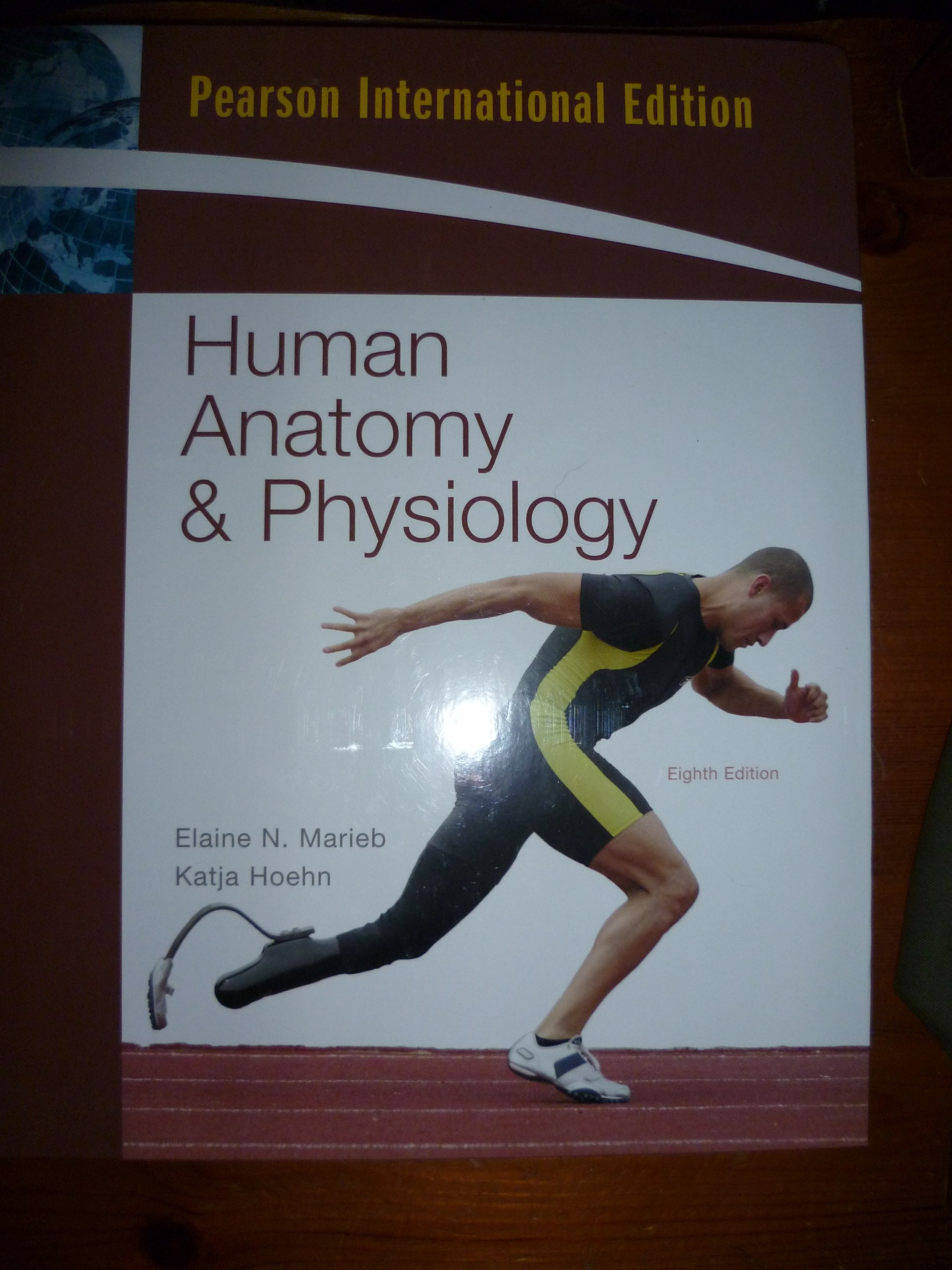 Human Anatomy & Physiology: Amazon.co.uk: Elaine N.; Hoehn, Katja ...