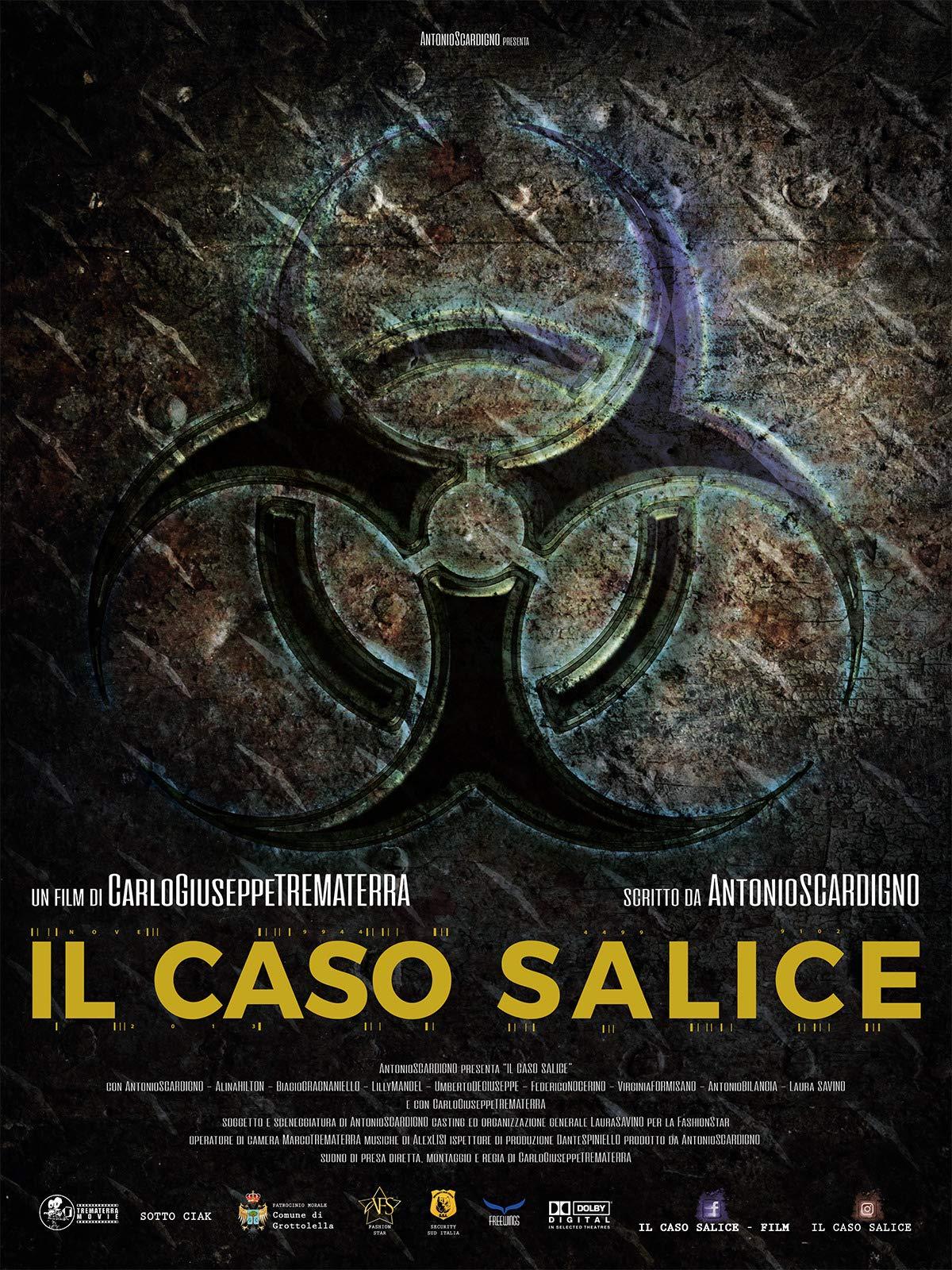 Salice's case (Il caso Salice)