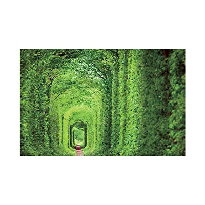 [ Puzzle life ] Tunnel of Love | 1000 Piece Jigsaw Puzzle: Toys & Games