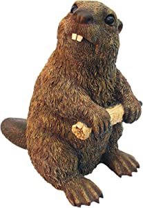 Beaver M Light Brown by Michael Carr Designs - Outdoor Beaver Figurine for gardens, patios and lawns (609031)