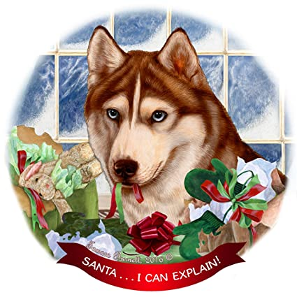Amazon Com Siberian Husky Red White Dog Porcelain Ornament