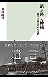 消えゆく沖縄~移住生活20年の光と影~ (光文社新書)