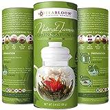 Teabloom Natural Blooming Tea – Hand Tied Organic Green Tea Leaves + Jasmine Blossoms Flowering Tea Creations – Blooming Tea Gift Set – 12-Pack, 36 Steeps, Makes 250 Cups