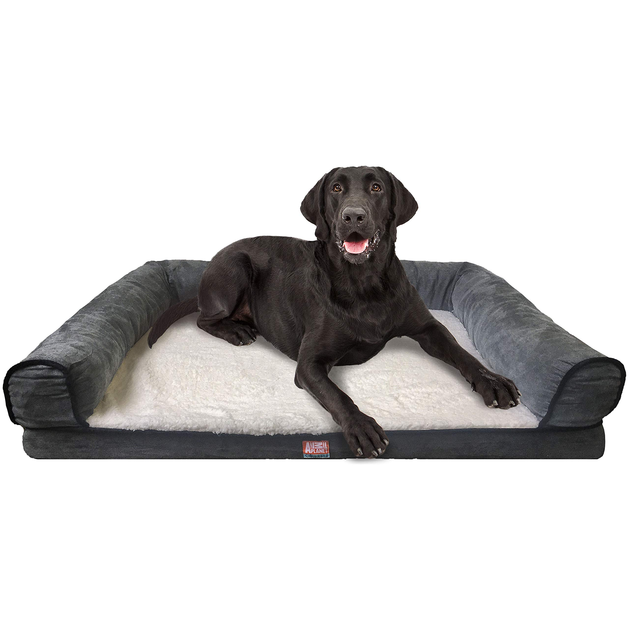 Animal Planet Orthopedic Luxury Dog Bed - Premium Memory Foam Pet Dog Sofa Bed Lounger with Washable Cover - for Dogs & Cats, Jumbo, Grey