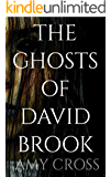 The Ghosts of David Brook