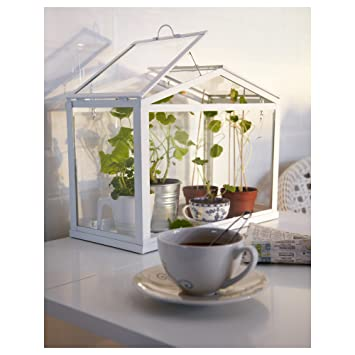 Ikea Greenhouse, Indoor/outdoor, White | image source:  images-na.ssl-images-amazon.com