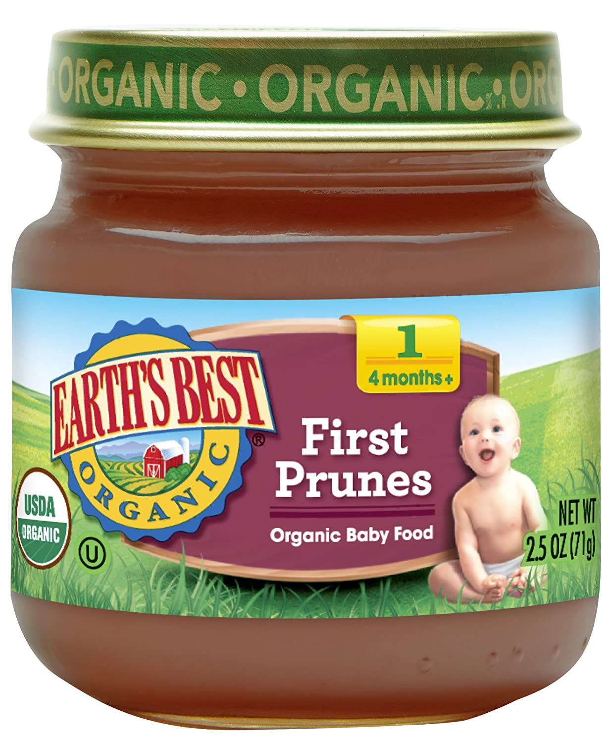 Earth's Best Organic Baby Food, First Prunes, 2.5 Ounce (Pack of 12) Earth' s Best