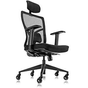 Ergonomic Mesh Office Chair with Roller Blade Wheels - Ridiculously Comfortable High Back Computer Desk Chair and Fully Adjustable (Black)
