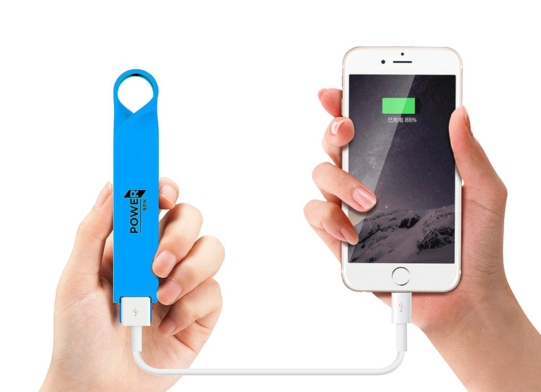 Amazon.com: Power Brik Portable Charger Power Bank for ...