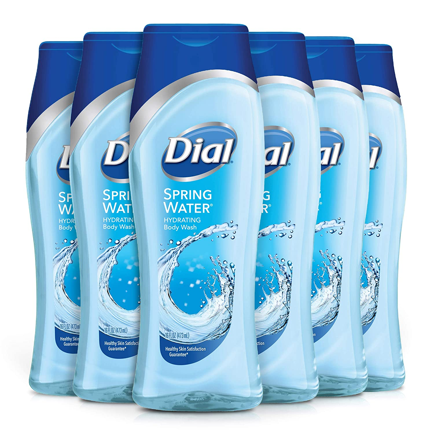 Dial Body Wash, Spring Water with All Day Freshness, 16 Fluid Ounces (Pack of 6) 00017000026534