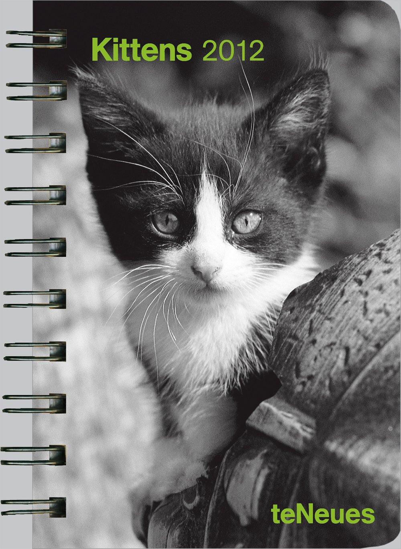 kittens-2012-taschenkalender-deluxe