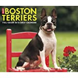 Just Boston Terriers 2018 Calendar