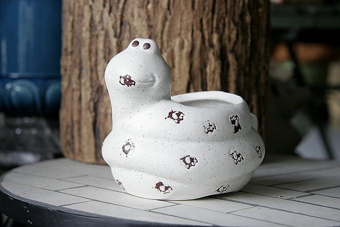 Fiori Per Vasi Pensili.Smart Art A Forma Di Vaso Da Fiori Cute Vivid Ceramica
