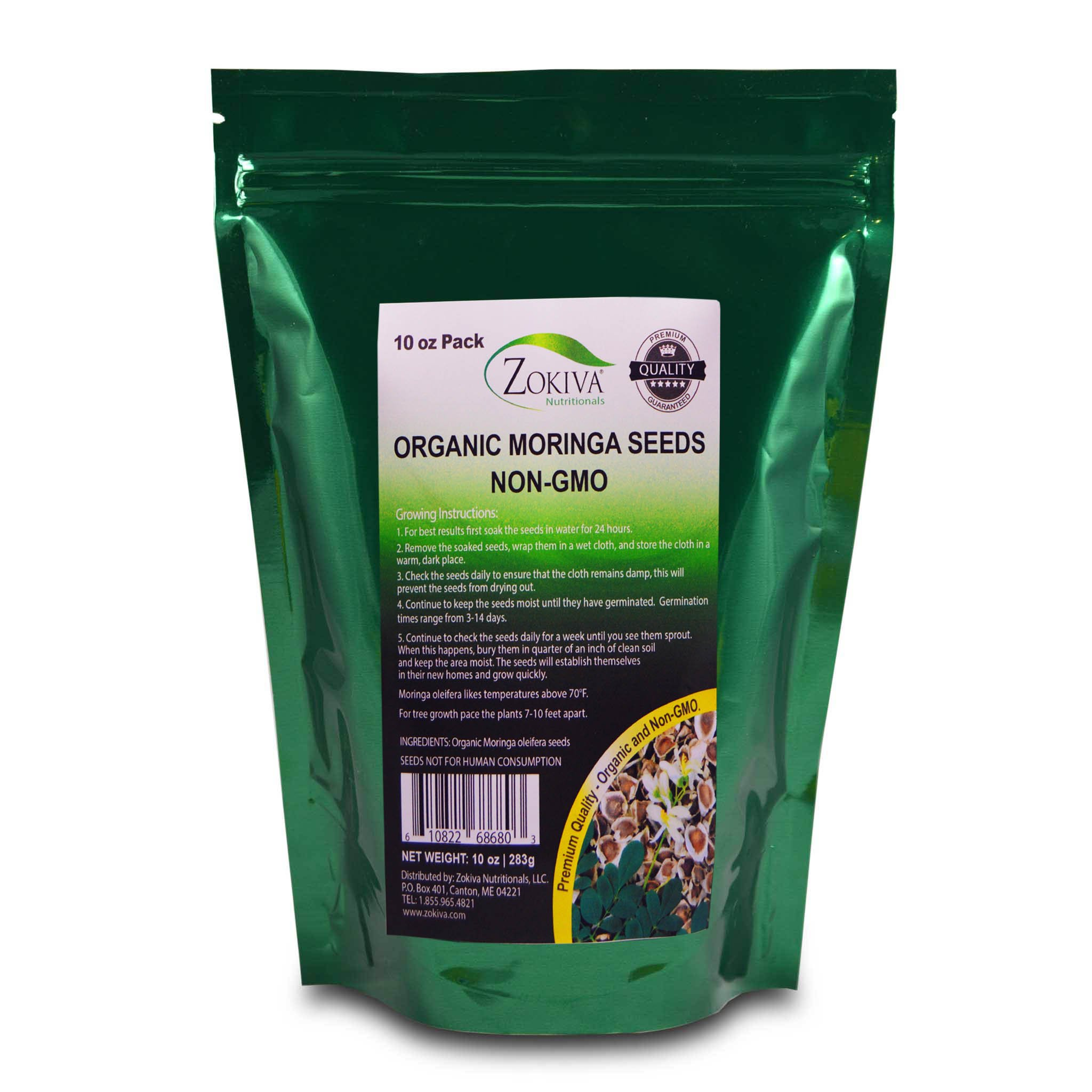 Moringa Seeds Organic Non-GMO Premium Quality 10 oz Pack in Resealable Pouch by Zokiva Nutritionals