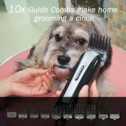 Cortapelos para perro, maquinilla recargable para perros y gatos de bajo ruido con peine, tijeras, delantal de diseño, estuche de almacenamiento: Amazon.es: ...