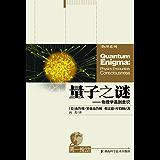 第一推动丛书•物理系列:量子之谜——物理学遇到意识