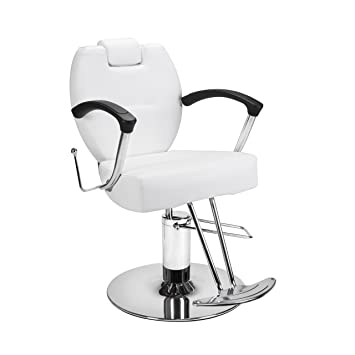 amazon com beauty salon styling chair herman white all purpose