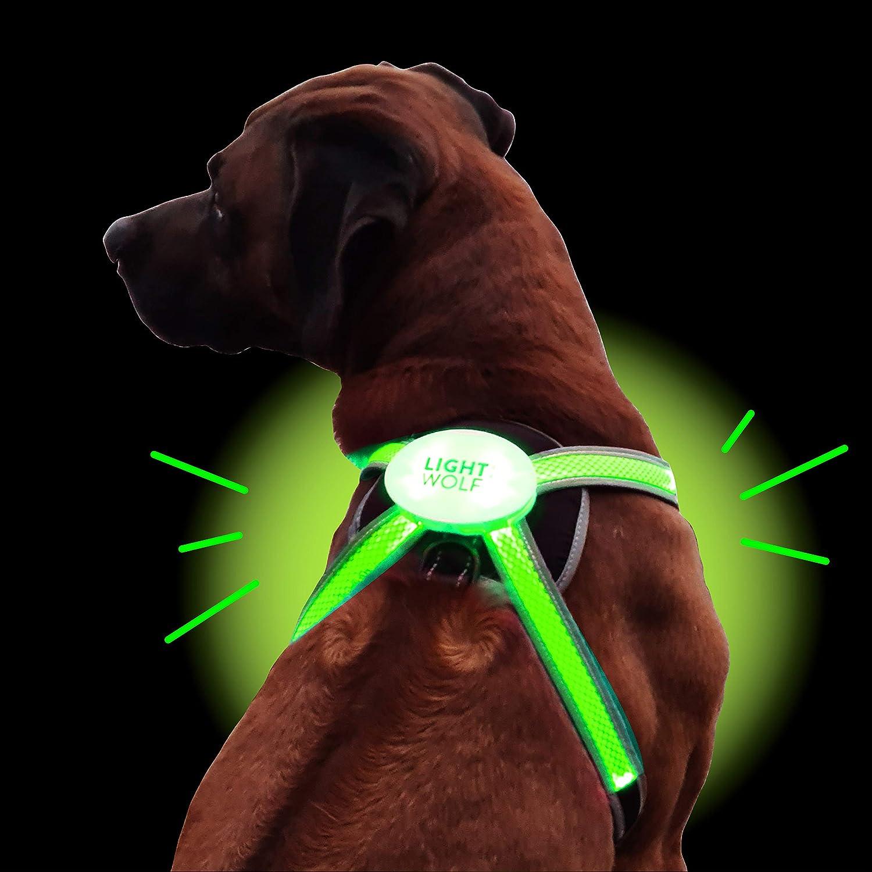Led Hundegeschirr Usb Aufladbar Mit 4 Farben Led Hundeweste Leuchtend Reflektierend Neues Modell Mit Lichtleiter Technik Regenfestes Hundegeschirr Für Kleine Und Große Hunde Küche Haushalt