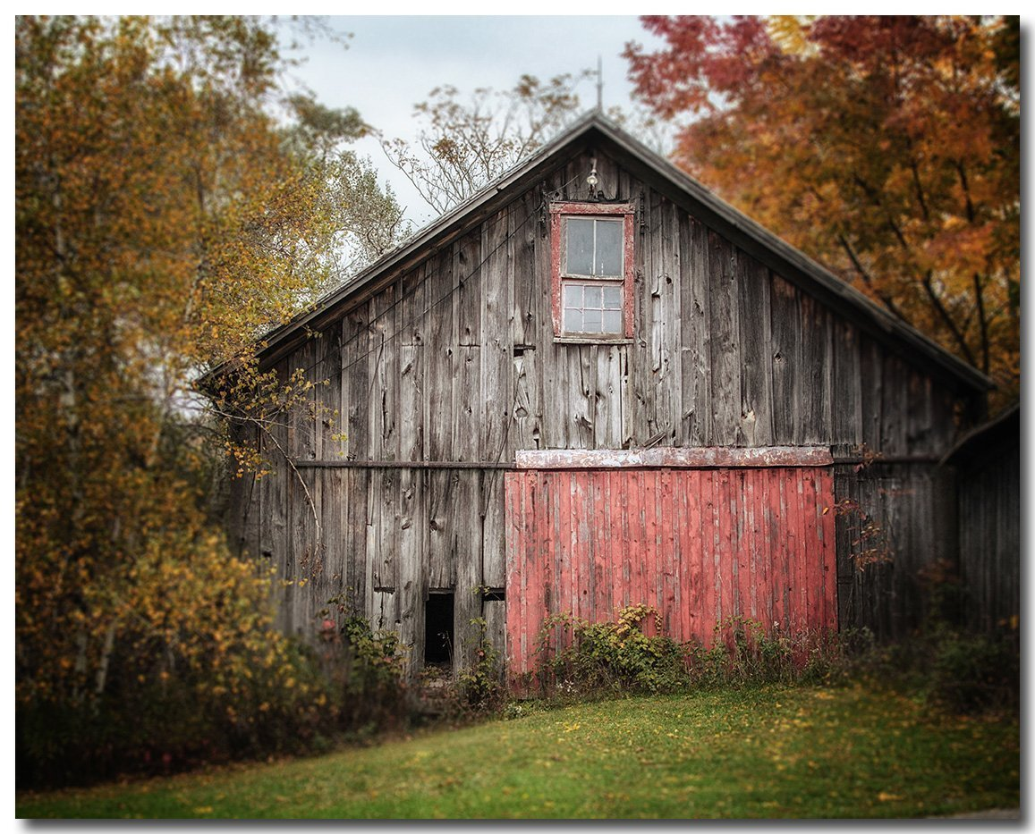 Farmhouse Decor 8x10'' Unframed Print of a Rustic Barn in Autumn by Lisa Russo Fine Art Photography